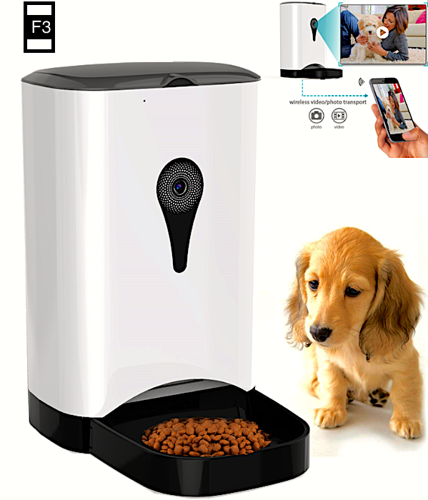 food dispenser feeder for dogs dog automatic wordpress