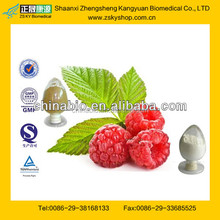 GMP Factory Supply Natural Raspberry Extract with High Quality