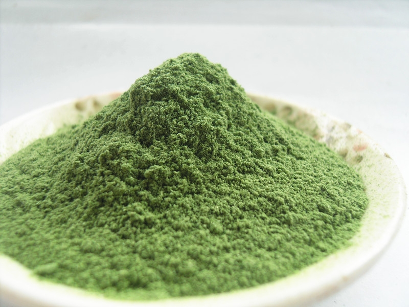 Health food bulk Dried barley grass powder