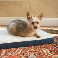Wholesale Removable Washable Cover Animal Shape Dog Beds