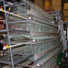 hot dipped galvanized metal chicken battery cages laying hens