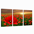 Red Flower Canvas Art/High Quality Sunrise Wall Art/Group Stretched Canvas Print
