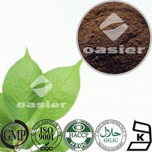 High Quality White Mulberry Leaf Extract Powder 1%DNJ HPLC