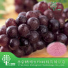 /product-detail/organic-dried-red-grape-powder-grape-fruit-juice-powder-60180167466.html
