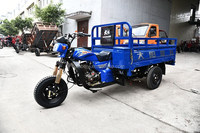 electric drived gasoline drived waterair cooled mini chopper 250cc engine cargo tricycle for sale