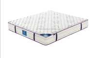 Practical quality plastic pocket coil spring mattress
