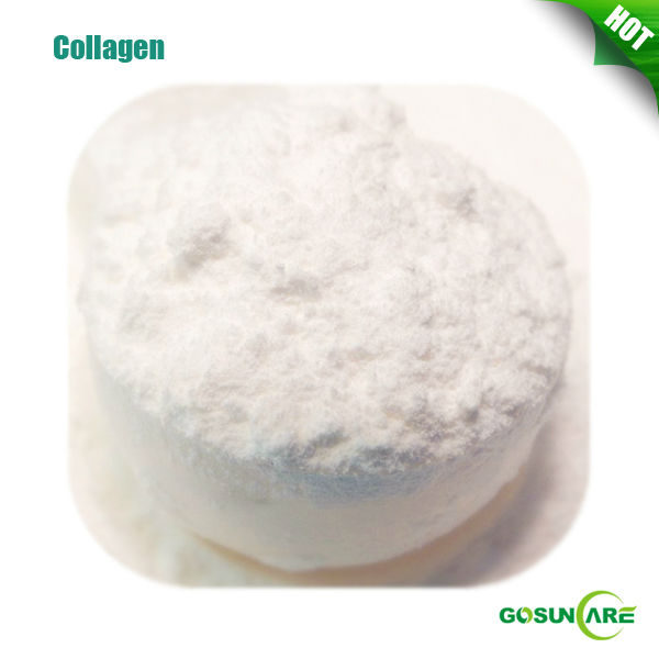 Bio Marine Collagen / Marine Collagen Powder