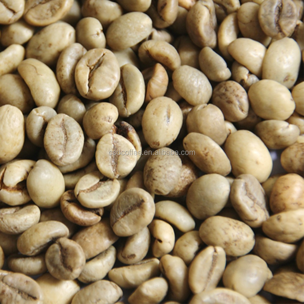 50/60kg Robusta green coffee beans for Vietnam Robusta