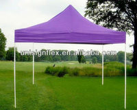 Customized Pop Up Tent For party and Event