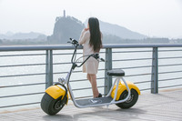 High Powered 1000w Electric Scooters With Lithium Battery