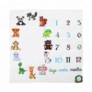 Super Soft Full Fleece Custom Panel Print Baby Milestone Blanket
