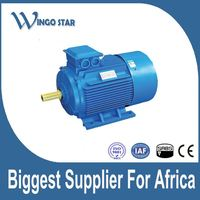 GOST standard Y2 three phase electric motor