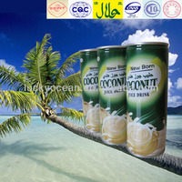 household coconut squash 240ml beverage in can