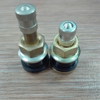 Metal Tubeless Clamp-in Valves for Truck and Bus
