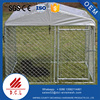 high quality galvanized large outdoor dog creat /Large animal creat for dog factory
