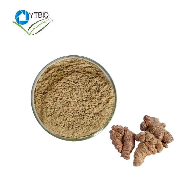 supplier for Radix Notoginseng Extract/Sanchi Extract powder(Notoginsenosides10%)