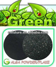 seaweed extract composition fertilizer
