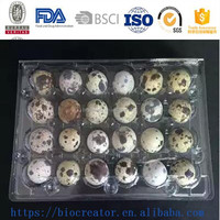 China Manufacture Custom Quail Egg Tray