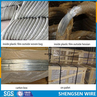 factory price Q195 0.5-4.0mm galvanized binding wire for building construction