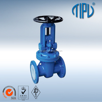 Flange Cast iron BS 5163 non rising stem gate valve