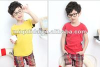 Wholesale /OEM/retail 2012 hot sale kids t-shirt ,children clothes /boys cansul t-shirt