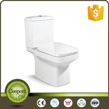 Hot Sale Competitive Price Washdown Toilet Bowl