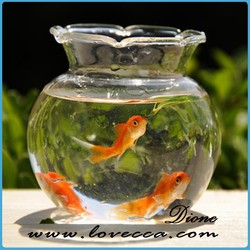 round glass fish tank for sale