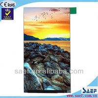 "TFT LCD 5.5"" IPS QHD 540X960 pixels without touch screen LCD panel"