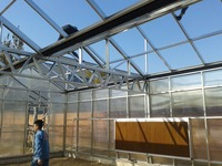 Commercial used polycarbonate greenhouse for coommercial