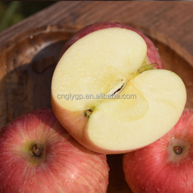 Top red apple fresh exporter in china Best price fuji apple
