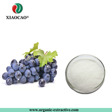 High quality Free sample 98% resveratrol 98% trans-resveratrol powder
