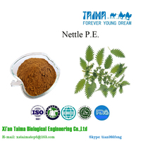 Where to get high quality Nettle P.E. Xian Taima your smart choice