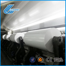 Uncoated pp plastic film for inkjet printing
