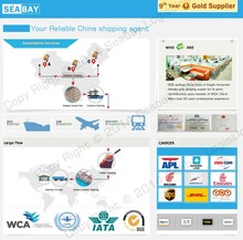 Professional China international freight forwarder logistics shipping agents company in Malaysia