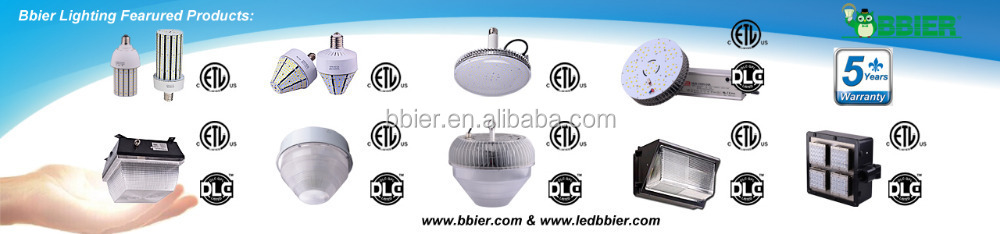 Cold white 7200lm Led acorn