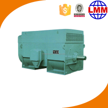 High power and voltage DC electric motor