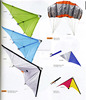 ripstop nylon fabric advertising kite dual line stunt kite sports kite
