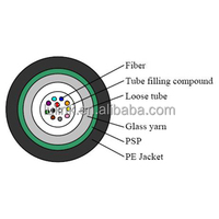 2 4 6 8 10 12 Cores Fiber Optic Cable Price Per Meter/ Access Building Cables