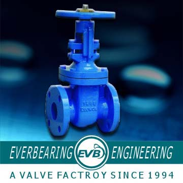 Class125 Rising Spindle Cast Iron Gate Valve
