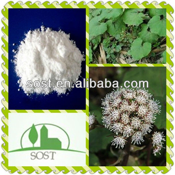 2013 Best Selling And Organic Herb Butterbur Extract