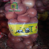 /product-detail/good-brand-chinese-fresh-yellow-onion-with-low-price-60370738501.html