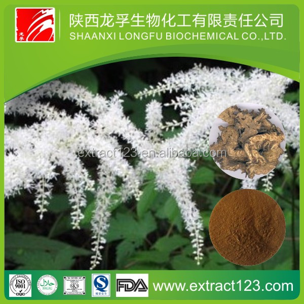 Herbal extract black cohosh p.e powder