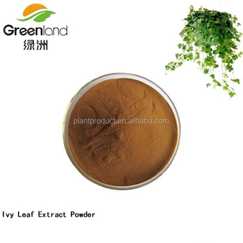 Hvedera helix L. Ivy leaf Extract with Hederacoside