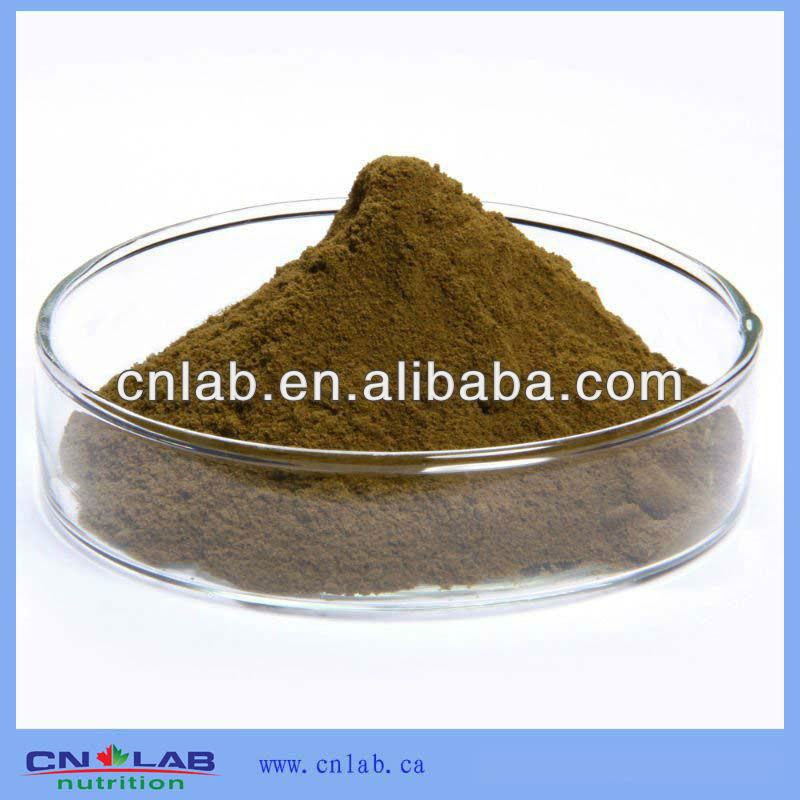 ISO&GMP Manufactory Supply Echinacea Angustifolia Root Extract
