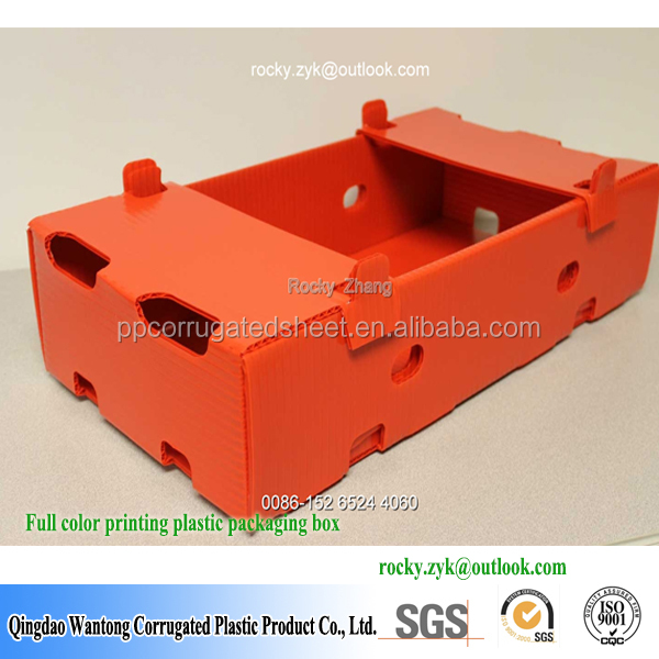 new products corrugated plastic apple fruit packaging boxes
