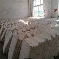 Chemical Pulp Type Bleached Bagasse Pulp
