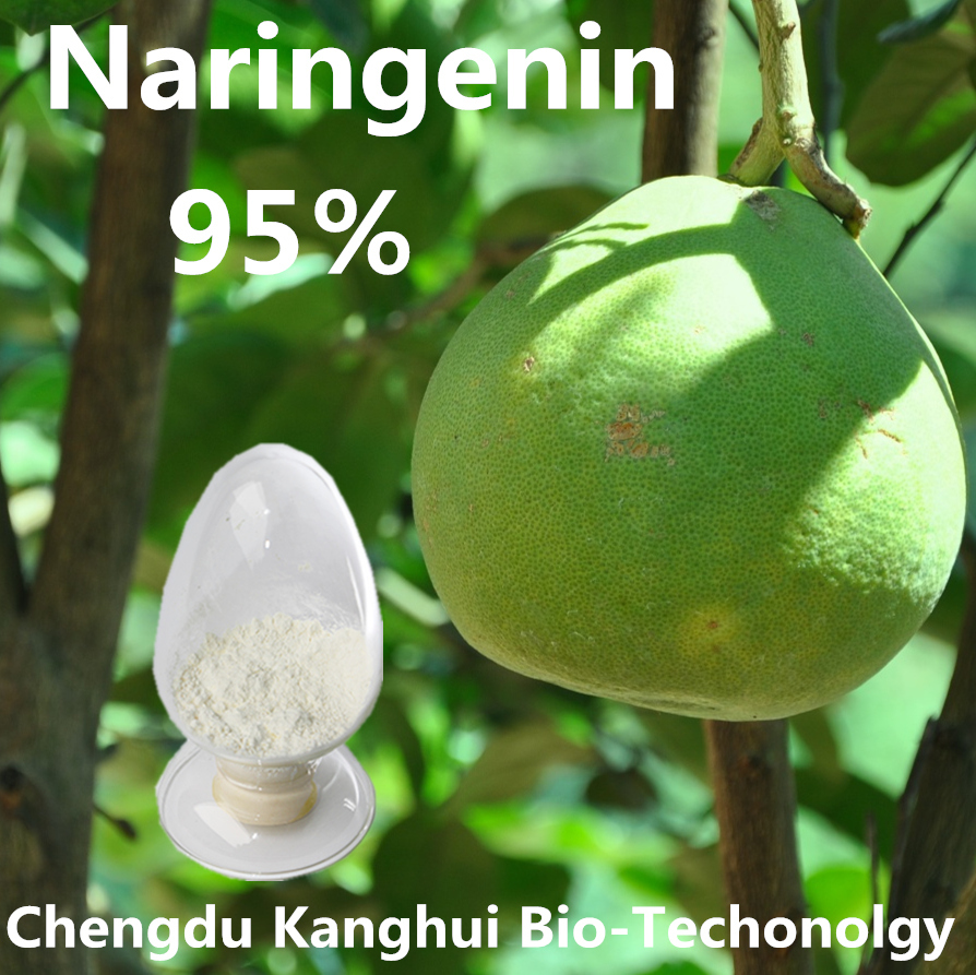 Organic Herbal Extract for 95% Naringenin 480-41-1