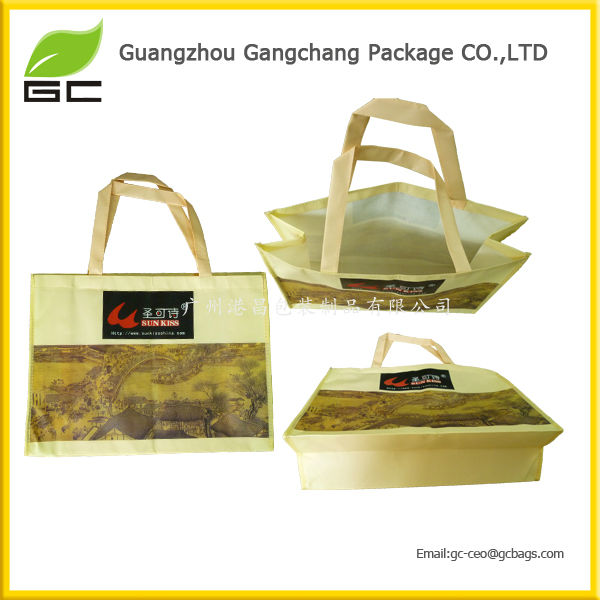 Wholesale Custom logo Popular shopping opp laminated NWPP bag