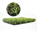 China supply cheap natural landscaping artificial grass