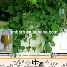 Chinese Ivy leaf extract/Hederagenin/Cure pain